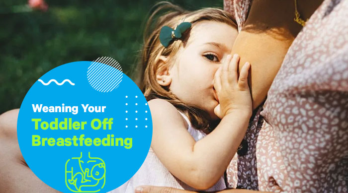 Weaning Your Toddler off Breastfeeding